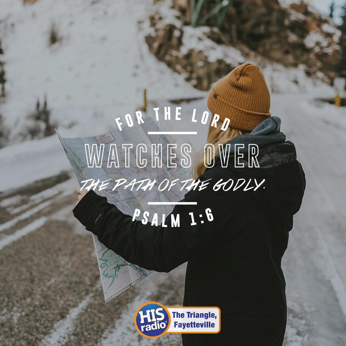 Psalm 1:6 - Verse of the Day